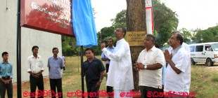 80% Electrification coverage for the Polonnaruwa District.